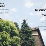 P+M magazine 14のコンピ参加バンド発表!