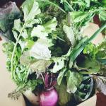 アマゾン宅配野菜生活のススメ