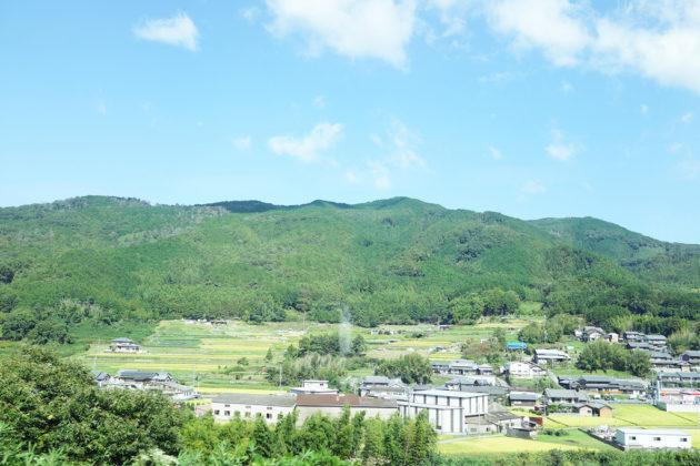 名古屋から大阪難波に近鉄特急アーバンライナーに乗って車窓写真を撮りに行ってきました!