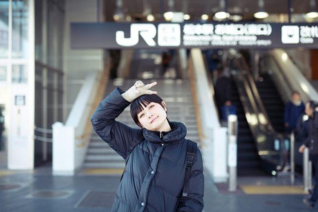 名古屋から松本へ「ワイドビューしなの」に乗って旅行に行ってきました!