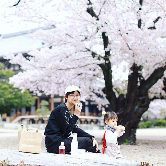 maru bagelでベーグルを買って東別院でお花見モーニング。うまい!#オニマガ名古屋散歩 (Instagram)