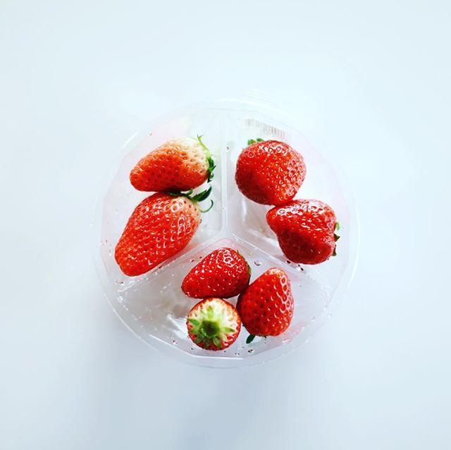 グッドモーニング苺3種類の食べ比べ。あきひめ、紅ほっぺ、あまおう。うまい! (Instagram)