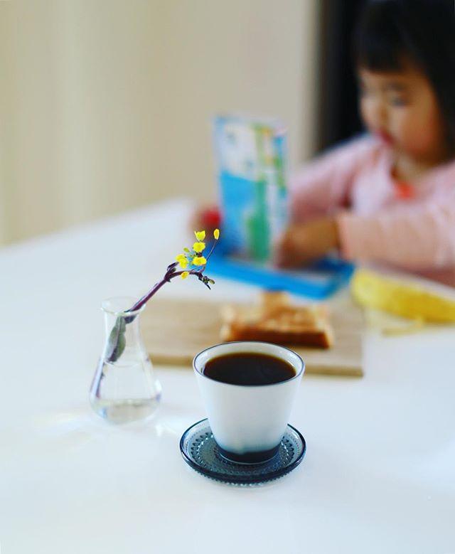 グッドモーニングコーヒー。一輪挿しにもなるし食べられるし紅菜苔は便利。一番好きな野菜。うまい! (Instagram)