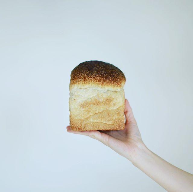 あぶさんとの食パンでグッドモーニング。うまい! (Instagram)