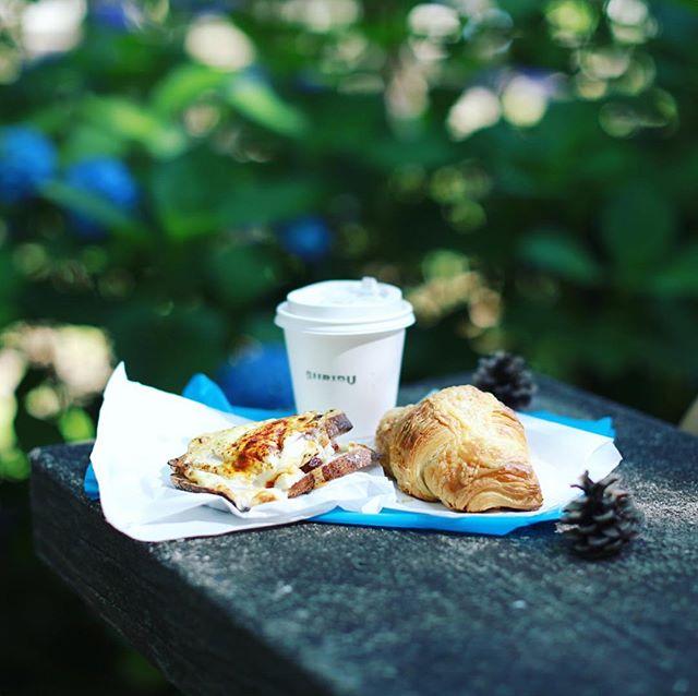 SURIPUでパンとコーヒー買って、鶴舞公園の紫陽花の散歩道でピクニックモーニング。焼きたてクロックムッシュとクロワッサンブランチ。うまい!#オニマガ名古屋散歩-#SURIPU #スーリープー #鶴舞公園 #ピクニック (Instagram)